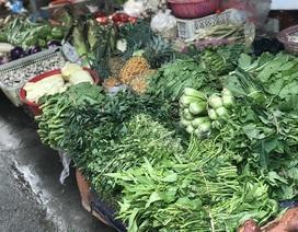 Giá rau xanh đắt đỏ, tiểu thương rón rén nhập hàng