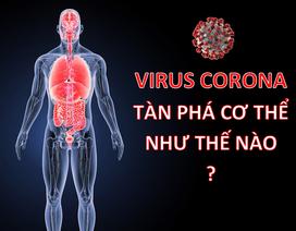 Virus corona mới tàn phá các bộ phận trên cơ thể như thế nào?