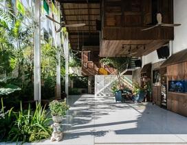 """Vẻ đẹp không ngờ của ngôi nhà """"tổ chim"""" tràn ngập cây xanh ở Sài Gòn"""