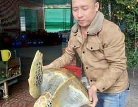 Bỏ gần chục triệu mua rùa quý hiếm để thả lại về biển
