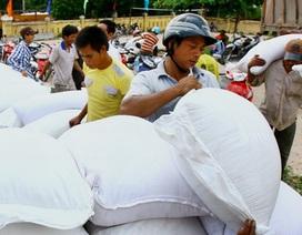 Thủ tướng quyết định xuất cấp gạo hỗ trợ 3 tỉnh