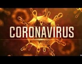 Độc tính của Covid-19 (nCoV) không mạnh hơn SARS-CoV