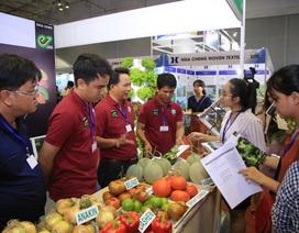 Lĩnh vực rau quả Việt thu hút doanh nghiệp, nhà đầu tư quốc tế