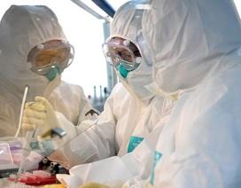 Giới khoa học bác bỏ nghi vấn virus corona do con người tạo ra