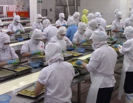 Dịch Covid-19: Công nhân nghỉ việc chăm con, doanh nghiệp linh hoạt trong sản xuất