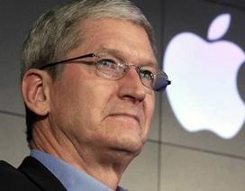 CEO Tim Cook của Apple bị người lạ quấy rối