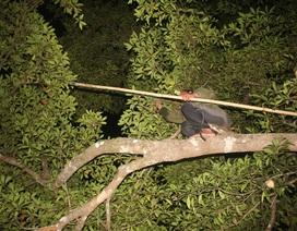Gia Lai: Kỳ thú trải nghiệm thác Trăn trong rừng sâu
