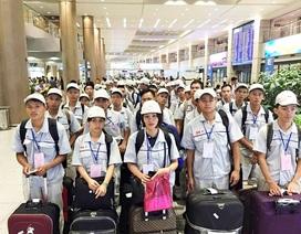 Covid-19: Có bao nhiêu lao động Việt Nam làm việc tại vùng dịch ở Hàn Quốc?