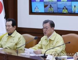 Hàn Quốc ghi nhận ca thứ 6 chết vì corona, số người nhiễm tăng lên 602