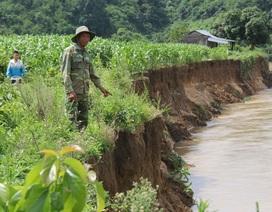 """Báo động tình trạng """"rút ruột"""" sông, người dân bán đất, bỏ nhà tại Đắk Nông"""