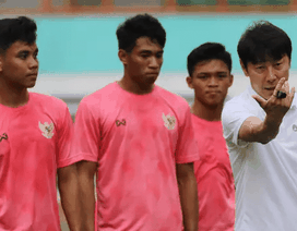 Không để HLV Shin Tae Yong chọn đội hình, Chủ tịch LĐBĐ Indonesia nói gì?