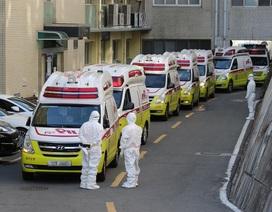 Gần 1.000 người nhiễm virus corona, Hàn Quốc cấp tập ngăn dịch bùng phát