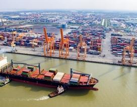 """Đội tàu biển Việt Nam trên bờ vực phá sản vì """"thảm họa"""" kép"""
