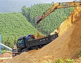 Ồ ạt lấy đất đồi chở ra ngoài tiêu thụ trái phép tại Thừa Thiên Huế