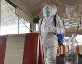 Đại sứ Nga tiết lộ chiến dịch đặc biệt chống virus corona của Triều Tiên