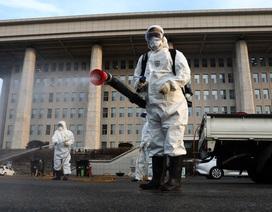 Dịch Covid-19: Hàn Quốc có thêm 115 ca nhiễm mới