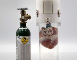 """Thiết bị mới giúp tim """"tươi"""" lâu hơn trước khi chờ cấy ghép"""