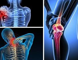 Giảm nỗi lo đau xương khớp với bộ đôi TPBVSK Bách Niên Vương