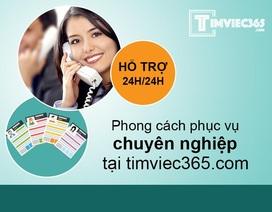 Bỏ túi bí quyết sử dụng các mẫu CV độc đáo tại timviec365.com.vn để tìm việc thành công