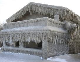 Cảnh tượng lạ lẫm bao phủ cả khu dân cư sau trận bão tuyết