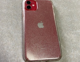 """iPhone 11 vẫn """"sống sót"""" sau 2 tháng bị thất lạc dưới hồ nước"""