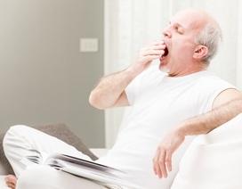 """Ngủ gà, ngủ gật: Tình trạng không thể """"ngó lơ"""" ở người lớn tuổi"""