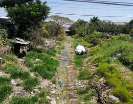 Cà Mau công bố tình huống khẩn cấp hạn hán tại vùng ngọt hóa
