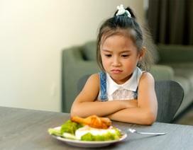 Khi trẻ bị rối loạn tiêu hóa, thực phẩm nào mẹ cần bổ sung để con có nguồn dinh dưỡng ổn định