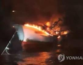 Cháy tàu cá 29 tấn ở Hàn Quốc, 5 thủy thủ người Việt mất tích