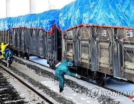 Triều Tiên quyết liệt phòng chống virus corona