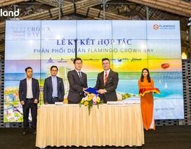 MLAND Miền Bắc phân phối chính thức dự án Flamingo Thanh Hoá