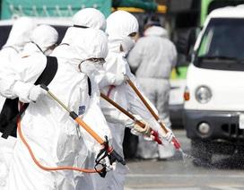 Hàn Quốc: 42 người chết, hơn 6.200 ca nhiễm Covid-19
