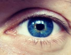 Sử dụng chỉnh sửa gene để điều trị mù