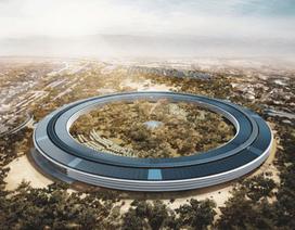 Lo sợ Covid-19, Apple kêu gọi nhân viên làm việc ở nhà