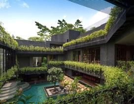 """Sửng sốt với """"khu vườn nhiệt đới"""" ngay trên nóc nhà biệt thự ở Singapore"""
