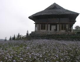 Sa Pa phong tỏa khu sinh thái nơi 2 du khách Anh lưu trú