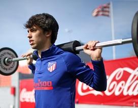 Felix trở lại, Atletico Madrid sẵn sàng làm khách trước Liverpool