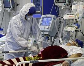 """27 người tử vong tại Iran vì tin chuyện """"uống rượu để chống virus corona"""""""