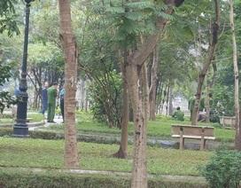 Hà Nội: Bắt giữ nghi can sát hại chủ nợ rồi phi tang ở vườn hoa