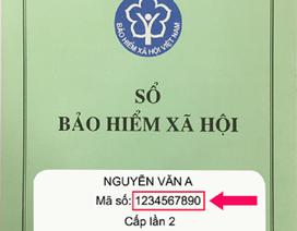 BHXH VN: Hướng dẫn 3 cách tra cứu mã số BHXH để khai báo y tế điện tử