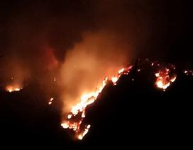 Hơn 300 người dập lửa cứu rừng trong đêm