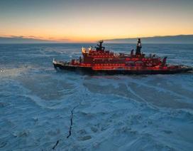 Coronavirus làm chậm nghiên cứu biến đổi khí hậu ở Bắc Cực