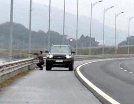 Người đàn ông dừng xe trên cao tốc để… bắn chim