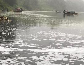 Công an vào cuộc, điều tra nguyên nhân cá chết hàng loạt trên sông Chu