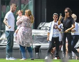 Ngưỡng mộ hình ảnh hạnh phúc của gia đình David Beckham