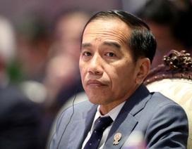 Tổng thống Indonesia và nội các xét nghiệm virus corona