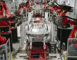 """Tesla bị """"tuýt còi"""" vì làm trái lệnh cấm, định tiếp tục sản xuất xe"""