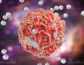 """Nghiên cứu mới: Dùng tế bào """"hoại tử"""" để...chữa ung thư"""