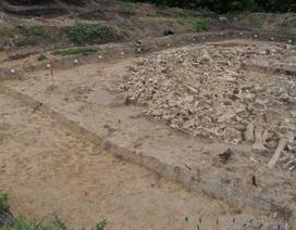 Phát hiện ngôi nhà cổ được xây dựng bằng xương voi ma mút ở Nga