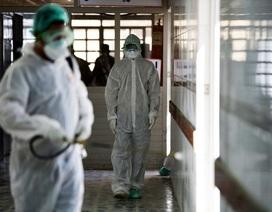 Các nhà nghiên cứu phát hiện ra cách cơ thể chống lại virus corona